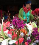 Provisioning, Flowers, Local Market